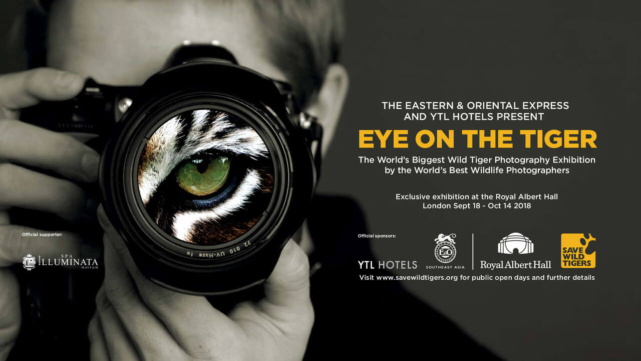 tiger photography exhibition