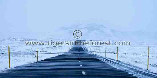 The road to nowhere!